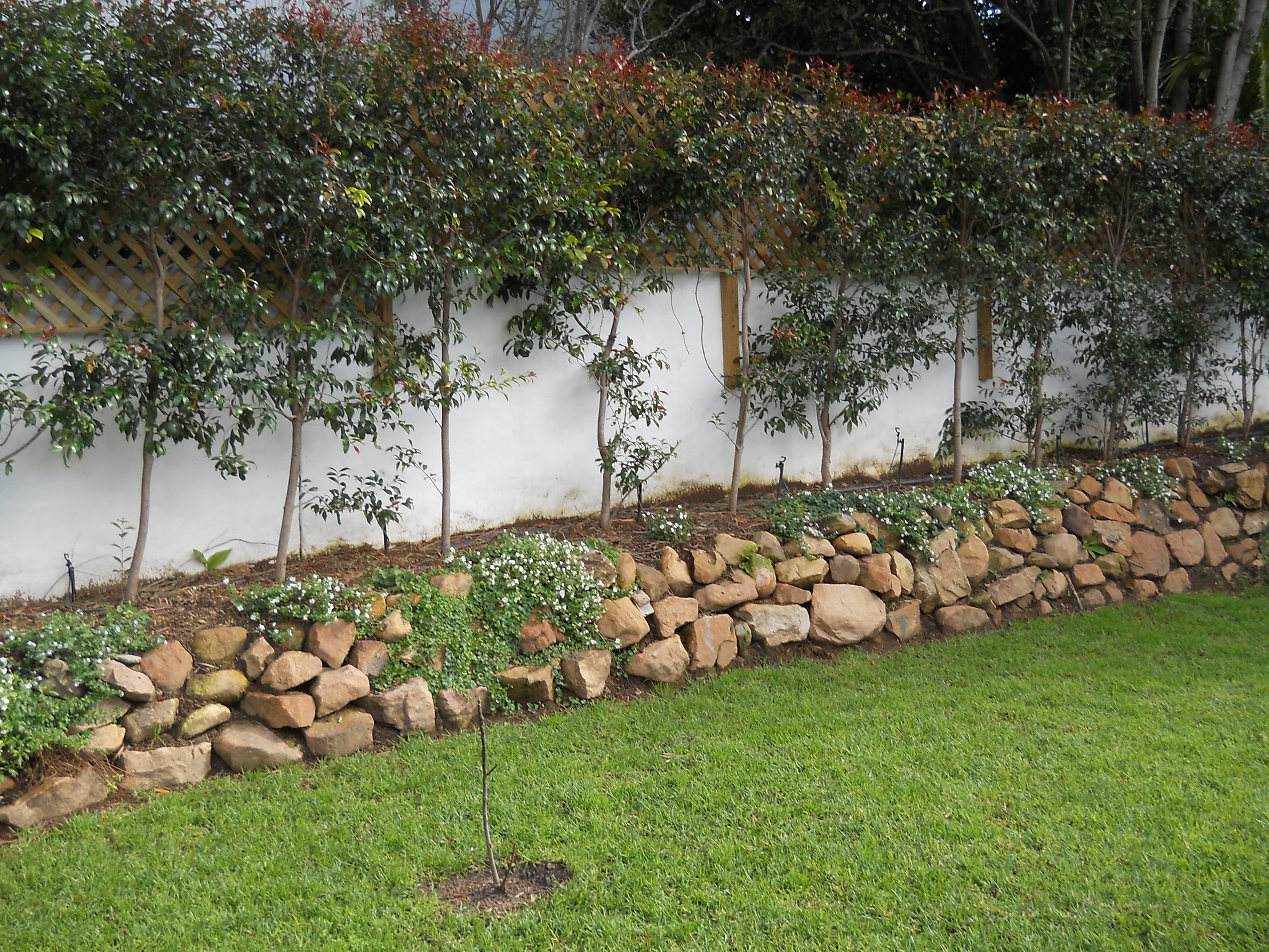 landscapers cape town garden irrigation gr laying