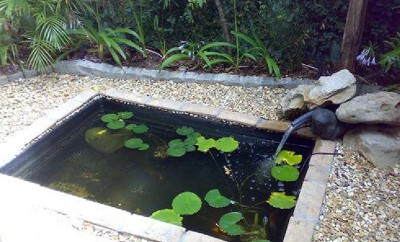 Water feature in Newlands (Cape Town's southern suburbs). Pre-made fibreglass lining encased in a cobble border. A small water pump emanates a soft gentle sound with overhanging ferns to create a shaded area, with pond lilies to support fish and frogs.